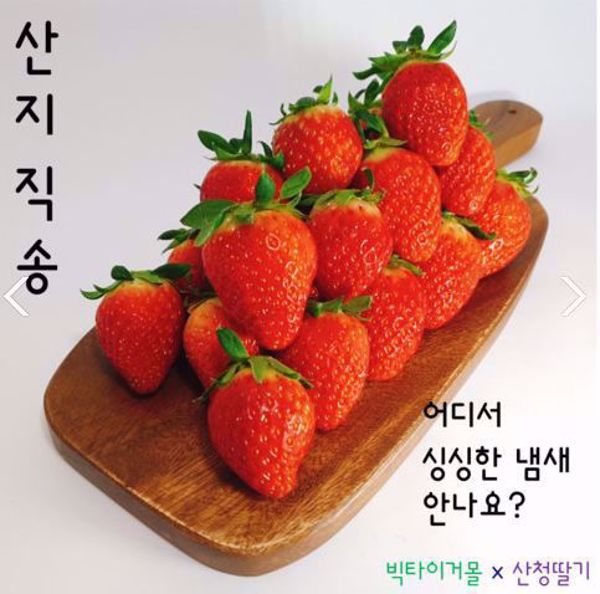 [한국청과] 산청딸기 / 설향딸기  2kg / 500g X 4팩